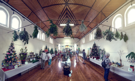 Willunga Christmas Tree Festival 2019