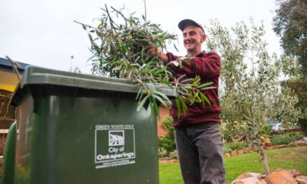 Green organics bins collected fortnightly from 1 January 2020