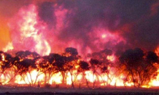 Bushfire Awareness in Aldinga Bay